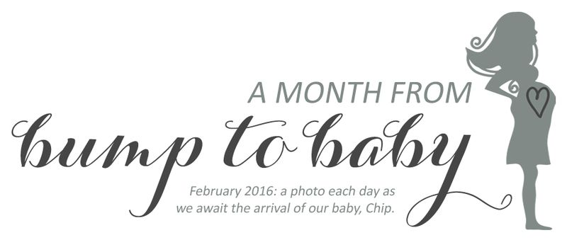 Month from Bump to Baby Banner
